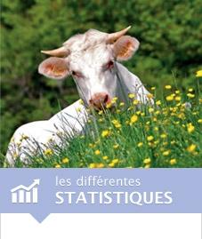 visuel-accueil-statistiques.jpg